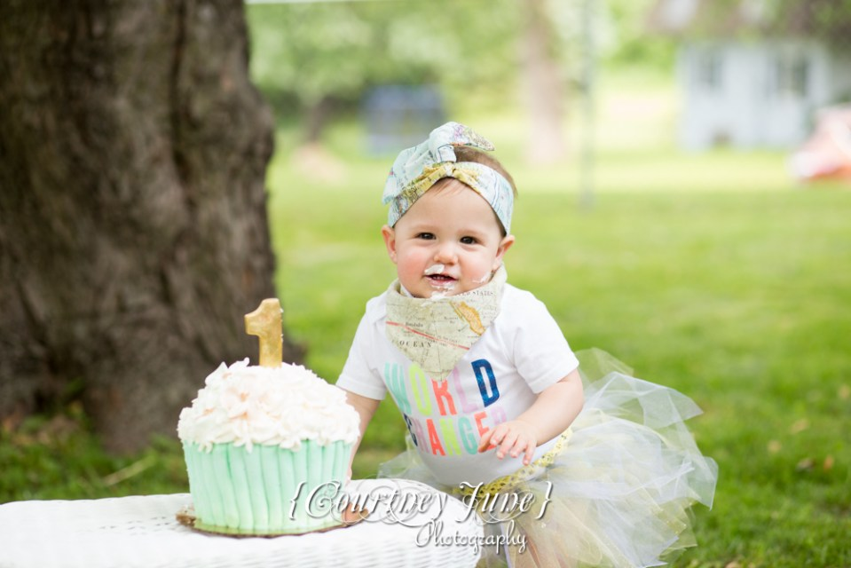 first-birthday-party-dr-suess-minneapolis-family-photographer-first-birthday-photographer-36