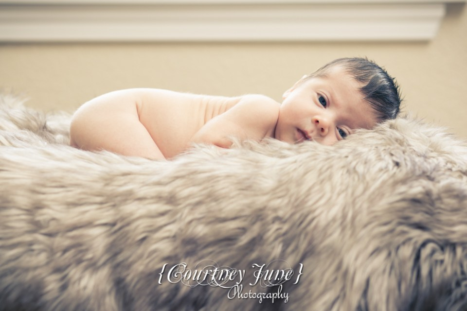 newborn photographer photographing a newborn on his stomach laying on a furry blanket looking at the camera