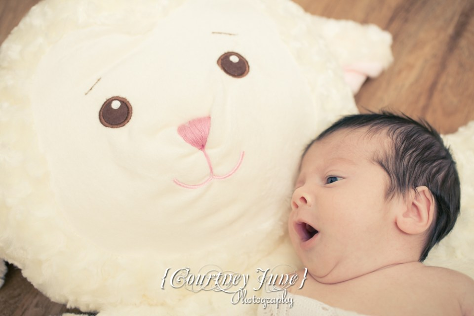 newborn photographer photographing a newborn baby yawning and lying on a giant stuffed lamb