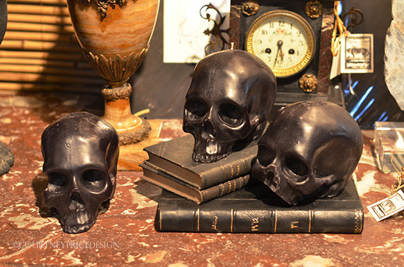 skulls and books on www.CourtneyPrice.com