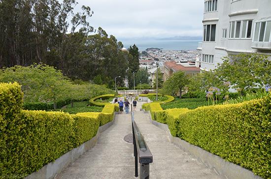 Presidio View, San Francisco Travel Guide on www.CourtneyPrice.com  http://wp.me/p2e5e8-3Or
