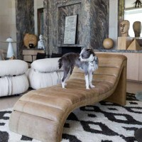 AT HOME with DOGS and their DESIGNERS, Sharing a Stylish Life