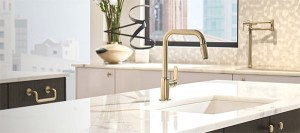 touch free voice activated faucets on www.CourtneyPrice.com