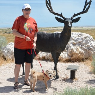 Antelope Island Connie and Rusty