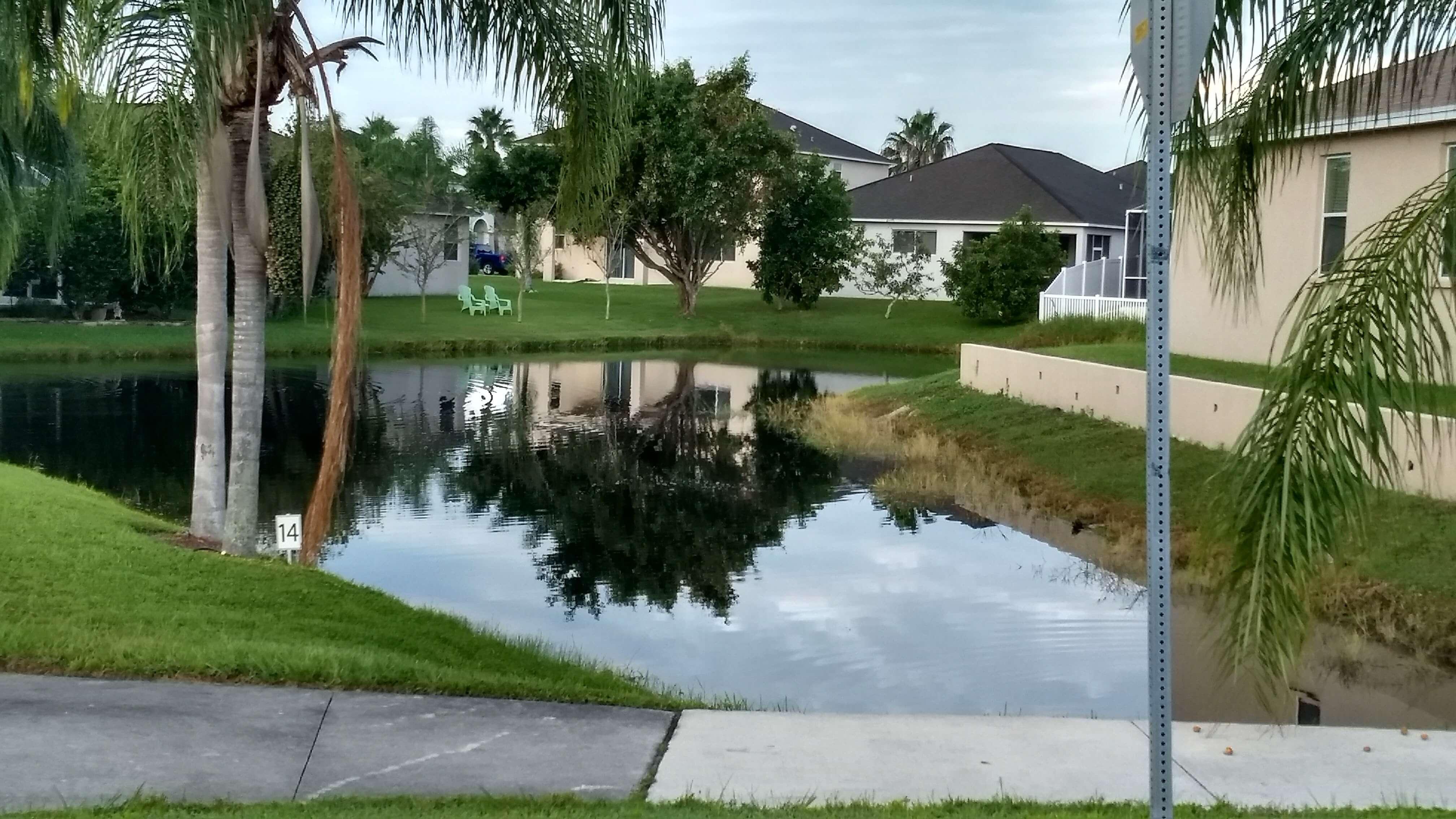 Picturesque Pond Views