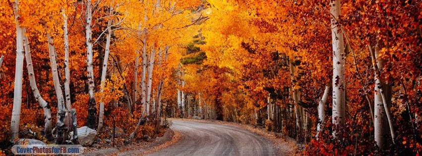 Fall Road Wallpaper California Autumn Cover Photos For Facebook Id 1877