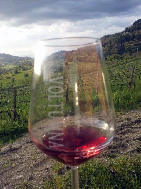 bicchiere con vino voltumna