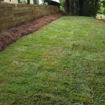 Retaining Wall Cost