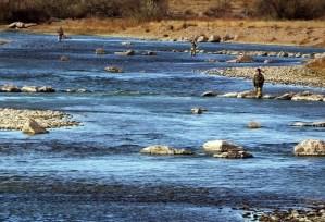 arkansas river fly fishing