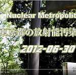 福島第一原発事故の大罪 東京都内の放射能汚染ホットスポット