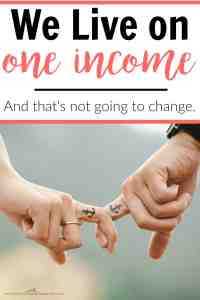 We Live on ONE Income
