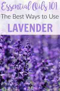 Essential Oil 101: The Best Ways to Use Lavender