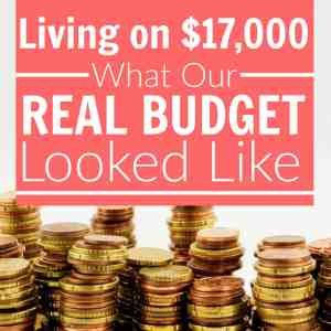 Living on $17,000, What Our REAL Budget Looked Like
