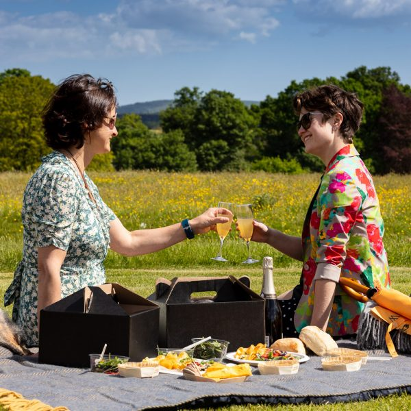 Cowdray Luxury Picnic Hampers