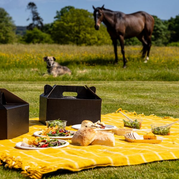 Cowdray Picnic Hampers