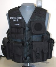 ncpd sov front