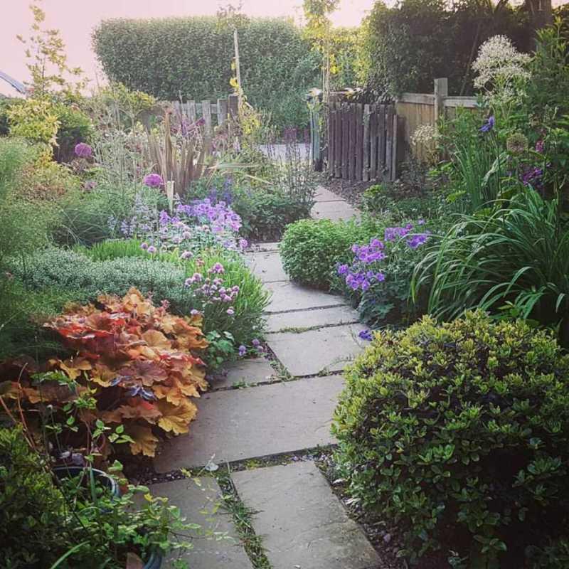 Small Contemporary Urban Garden