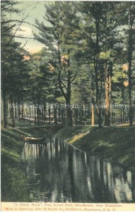 "Postcard ""A Shady Nook,"" Pine Island Park, John B. Varick Co. Publishers, Manchester Historic Association Collection"