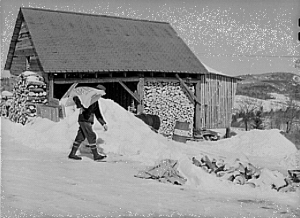 Photograph: Mr. Dickinson farmer, Lison near Franconia NH, 1940; US Farm Security  Administration; Library of Congress Prints & Photographs Division