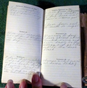 Sample page of George Wadleigh's diary.