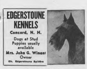 Edgerstoune Kennels advertisement