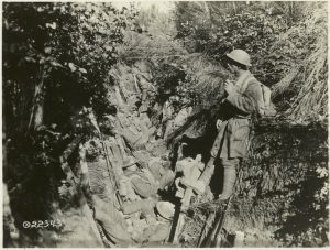 Trench Warfare, World War, 1914-1918, United States Signal Corps, War Department, Washington; Miriam and Ira D. Wallach Division of Art, Prints and Photographs; Photography Collection