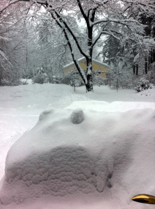 A snow covered vehicle, January storm 2011, New Hampshire.