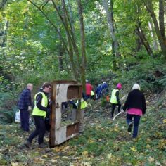 2019 Heron Rookery Clean up