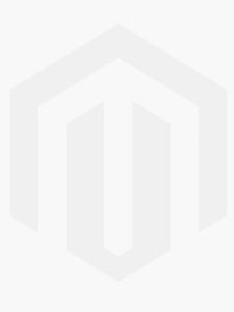 Two Faux Potted Snake Plants
