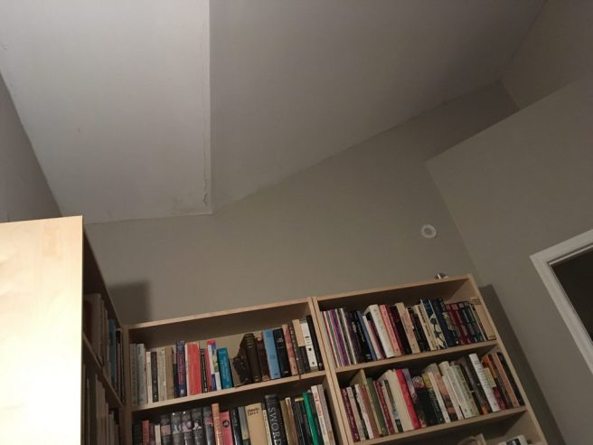 a picture of the library ceiling