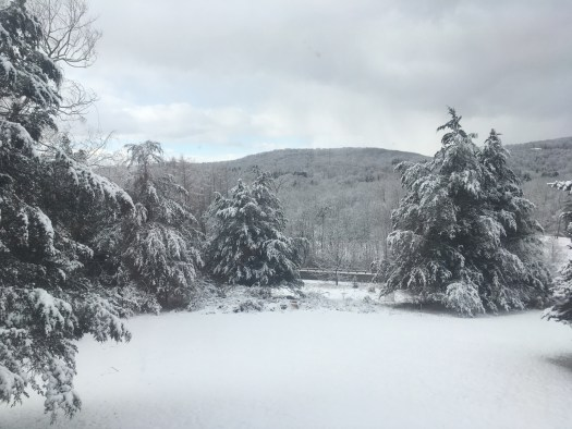 a view of the snow from my house