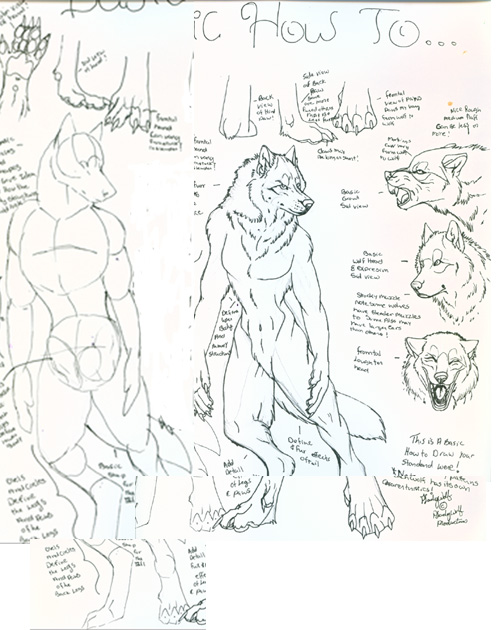 How to Draw Werewolves by Pladywolf