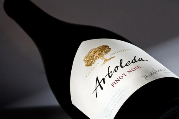 Vinho tinto Pinot Noir Arboleda | Cozinha do João