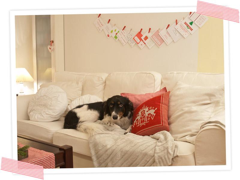 Was macht denn der Hund auf dem Sofa? Zeit für die Weihnachtspost. Wunderschöne Weihnachtspostkarten zum selberdrucken! Freebie/ Printable