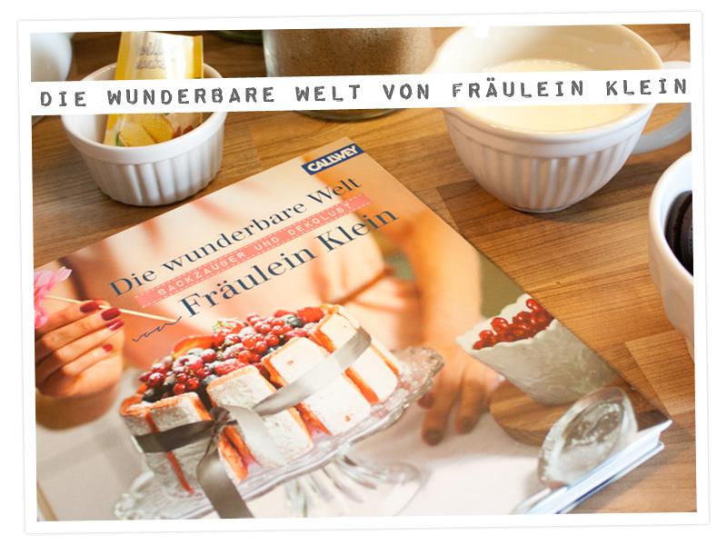 """Buchvorstellung """"die Wunderbare Welt von Fräulein Klein"""""""