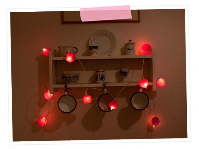 DIY: Herbstlicht - Lichgterkette aus Lampionblumen: