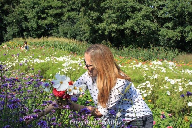 Wir deckten uns ein mit den schönsten Feldblumen