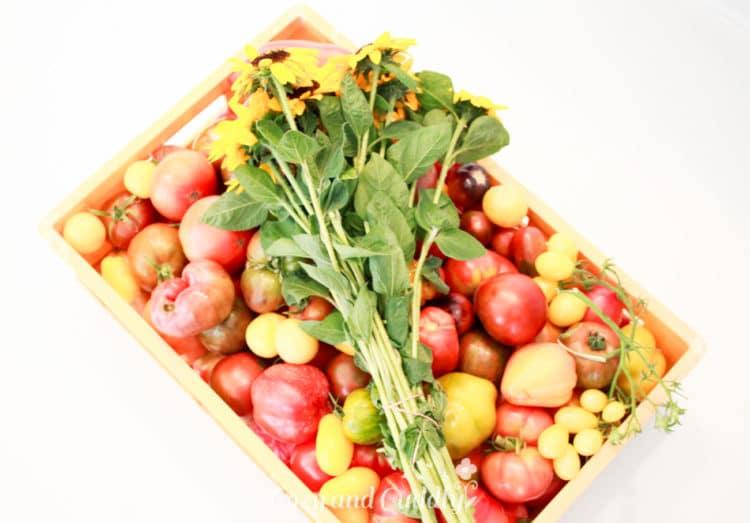 Ein Teil unserer Tomatenausbeute. Damit ging es zuück in die PopUp-Küche in der City von Hamburg.