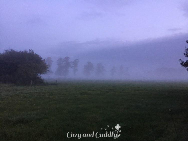 Abends wird es jetzt schon so früjh dunkel und Nebel zog auf.
