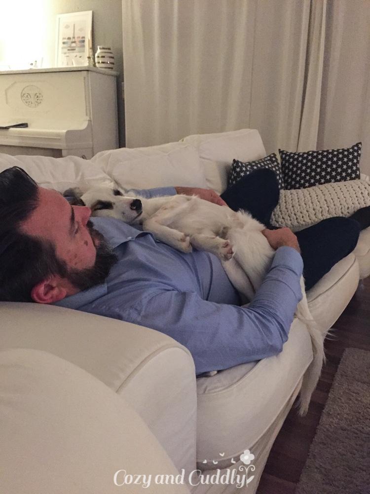 Als ich nach Hause kam, fand ich meine beiden Schätze kuschelnd auf dem Sofa vor. Luna braucht so viel mehr Körperkontakt wie Cooper. Das ist richtig süß.