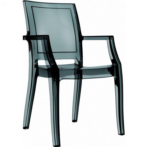 transparent polycarbonate chairs wheelchair dog arthur arm chair black isp053 tbla cozydays