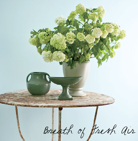 Breath of Fresh Air, Benjamin Moore 's Color of the Year