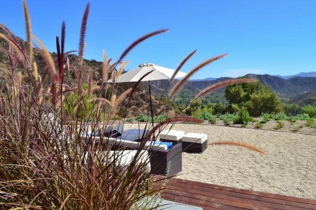 The backyard view from the Blu Homes LA Breezehouse Prefab Home via Cozy Stylish Chic