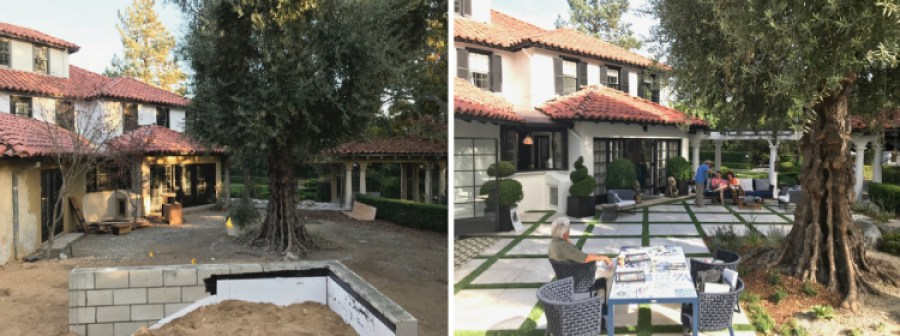 Pasadena Showcase House Before and After---Olive-Court
