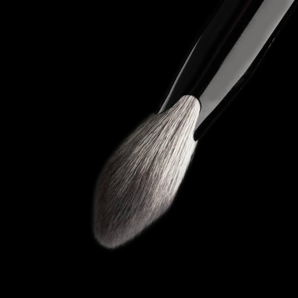 Best Complexion Fan Makeup Brush
