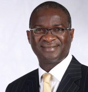 Governor Babatunde Raji Fashola