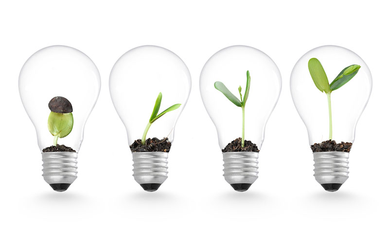 Business growth and innovation