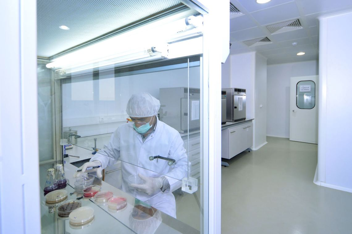 Anaerobic Incubator with petri dishes and laboratory technician. Back side of them is anaerobic incubator and autoclave