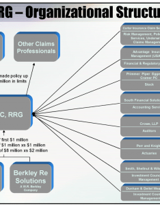 About us also organizational chart claim professionals liability insurance company rh cplic