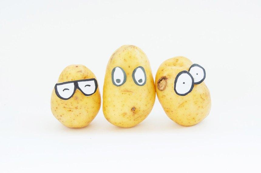 Campagne 2020 Cpret Geffrault pommes de terre
